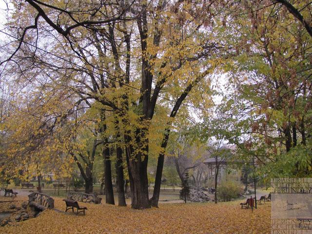 Parcul Ion Voicu